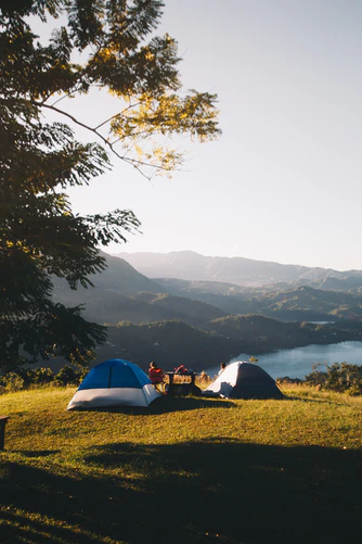 7 Secret Tips and Tricks For Camping With Dogs